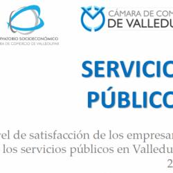 portada servicios publicos 2017